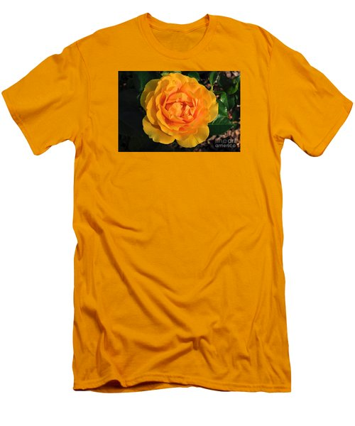 Men's T-Shirt (Slim Fit) featuring the photograph Golden Memories by Sandy Molinaro