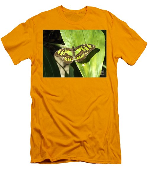 Green Butterfly Men's T-Shirt (Slim Fit) by Erick Schmidt
