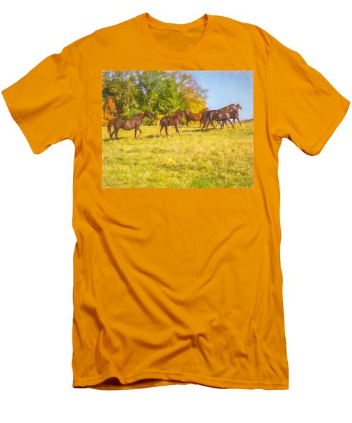 Group Of Morgan Horses Trotting Through Autumn Pasture. Men's T-Shirt (Athletic Fit)