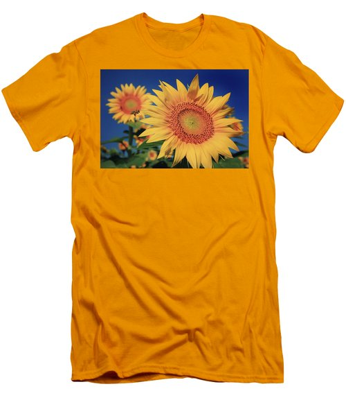 Men's T-Shirt (Slim Fit) featuring the photograph Heading For Gold by Chris Berry