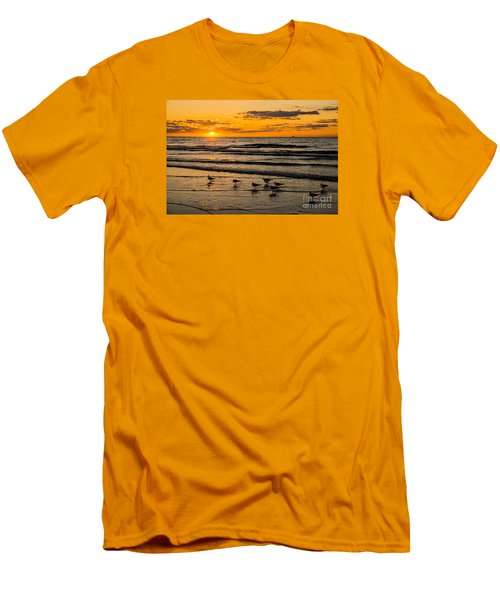 Hilton Head Seagulls Men's T-Shirt (Athletic Fit)