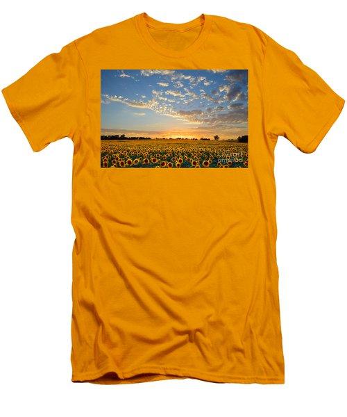 Kansas Sunflowers At Sunset Men's T-Shirt (Athletic Fit)