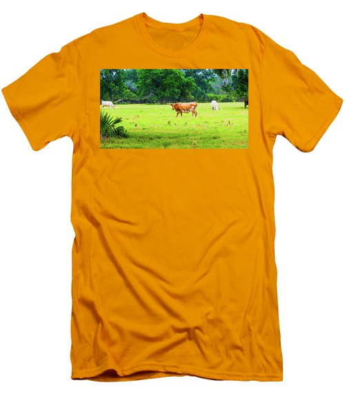 Lazy Afternoon In The Life Of A Cow Men's T-Shirt (Athletic Fit)