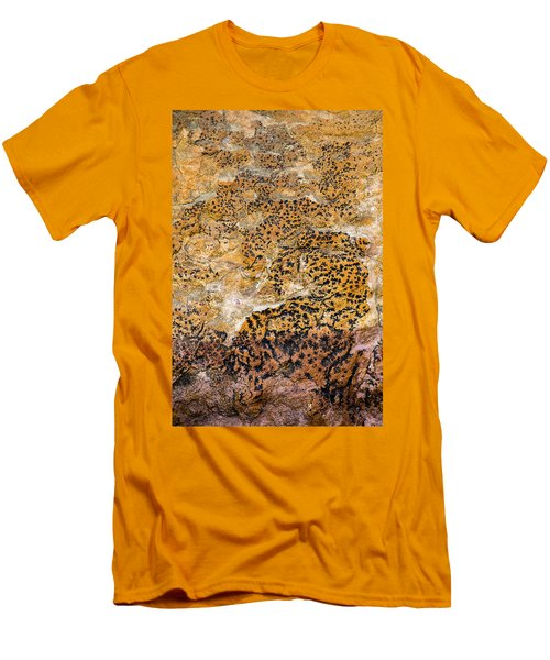 Men's T-Shirt (Athletic Fit) featuring the photograph Lichen Abstract, Bhimbetka, 2016 by Hitendra SINKAR