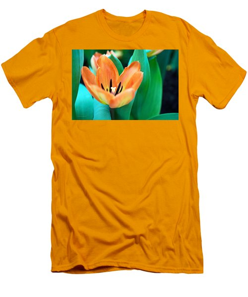 Lily #4 Men's T-Shirt (Athletic Fit)