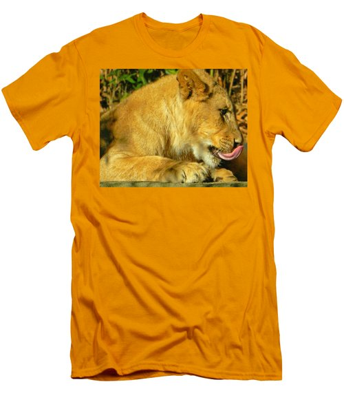 Lion Cub - What A Yummy Snack Men's T-Shirt (Slim Fit) by Emmy Marie Vickers