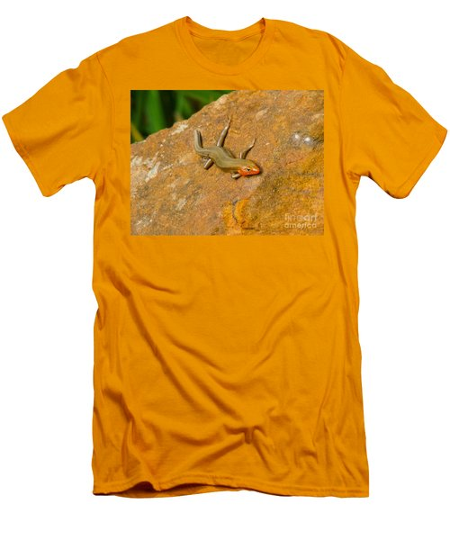 Men's T-Shirt (Slim Fit) featuring the photograph Lounging Lizard by Rand Herron