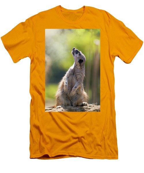 Magical Meerkat Men's T-Shirt (Athletic Fit)
