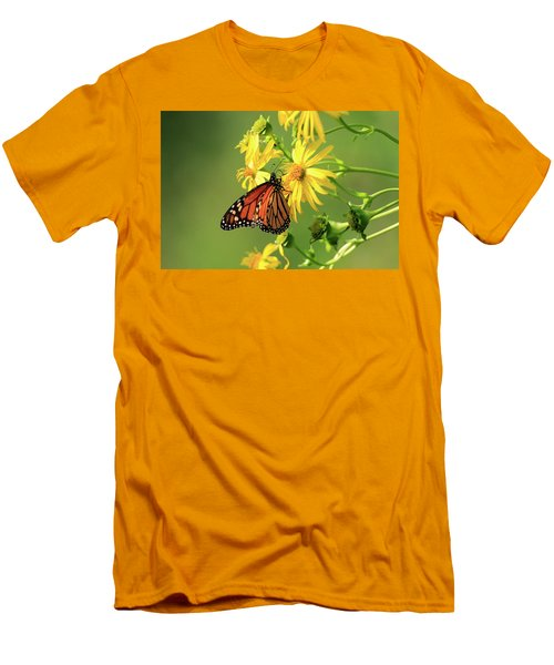 Monarch Butterfly Men's T-Shirt (Slim Fit) by Gary Hall