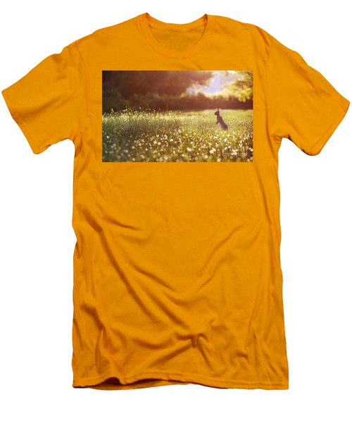 Morning Rabbit Men's T-Shirt (Athletic Fit)