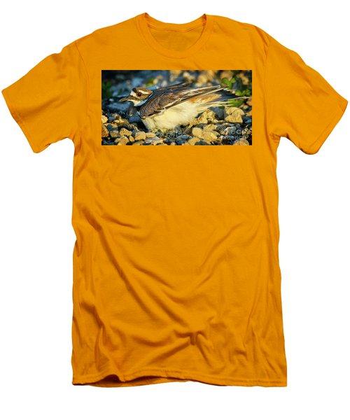 Mother Killdeer 3 Men's T-Shirt (Athletic Fit)