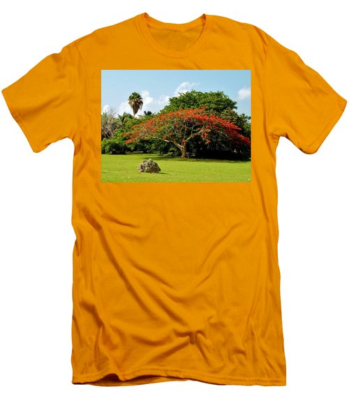 Poinciana Men's T-Shirt (Slim Fit) by Amar Sheow