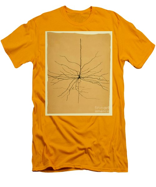 Pyramidal Cell In Cerebral Cortex, Cajal Men's T-Shirt (Athletic Fit)