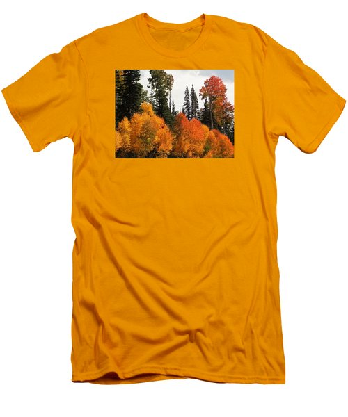 Radiant Autumnal Forest Men's T-Shirt (Slim Fit) by Deborah Moen