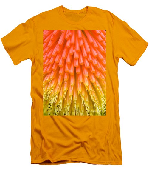 Red Hot Poker Flower Close Up Men's T-Shirt (Slim Fit) by Colin Rayner