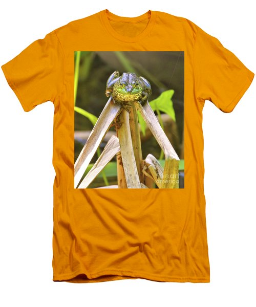 Sitting On Top Of The World Men's T-Shirt (Slim Fit) by Debbie Stahre