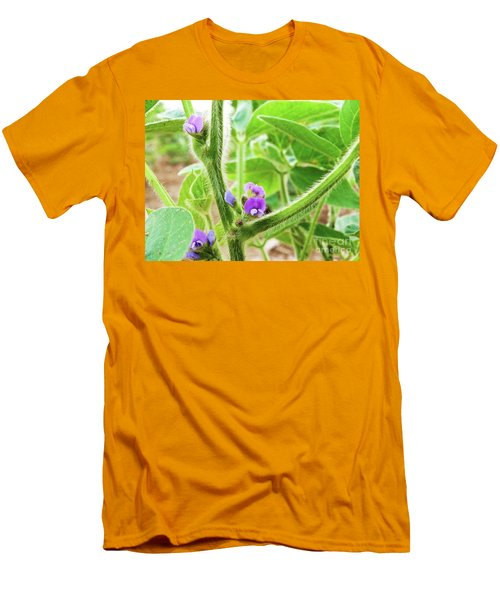 Soybean  Men's T-Shirt (Athletic Fit)