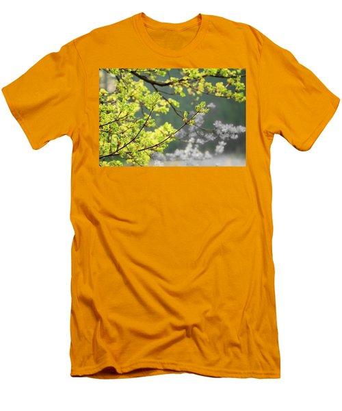 Spring In The Arboretum Men's T-Shirt (Slim Fit)