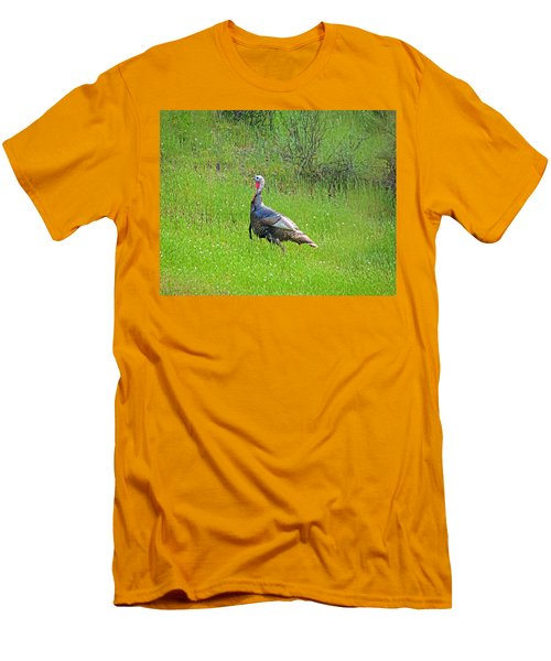 Spring Turkey Gobbler Men's T-Shirt (Athletic Fit)