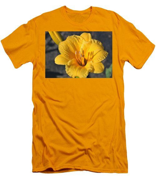 Men's T-Shirt (Athletic Fit) featuring the photograph Stella De Oro And Morning Dew by Sheila Brown
