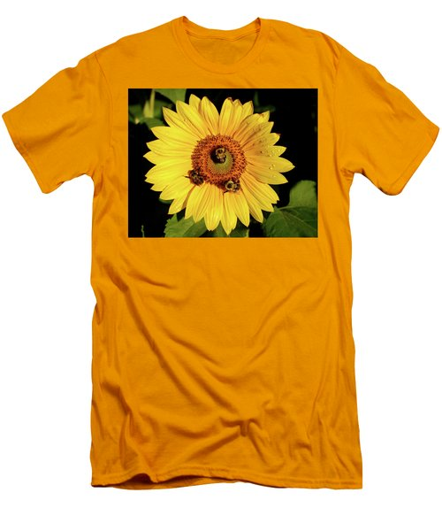 Sunflower And Bees Men's T-Shirt (Slim Fit) by Nancy Landry