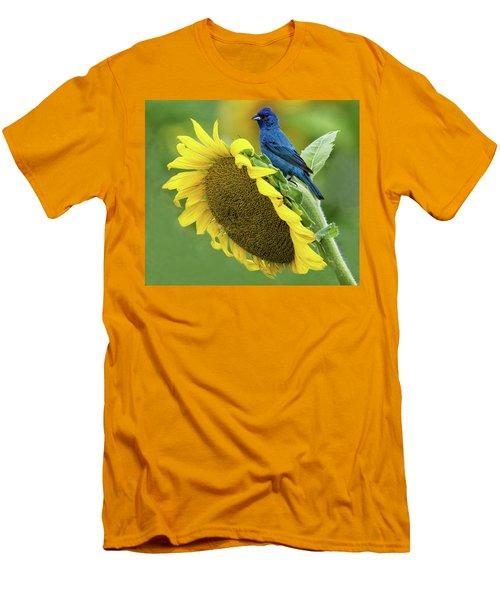 Sunflower Blue Men's T-Shirt (Athletic Fit)