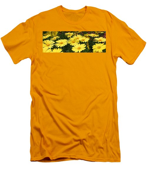 Waves Of Yellow Daisies Men's T-Shirt (Athletic Fit)