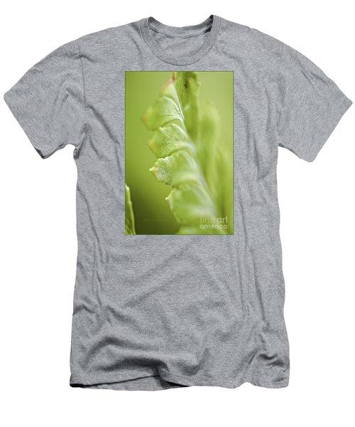 Fern Fronds Men's T-Shirt (Athletic Fit)