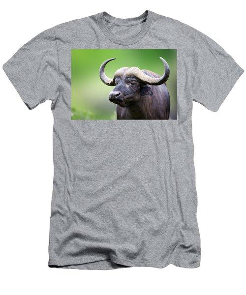 African Buffalo Portrait Men's T-Shirt (Athletic Fit)