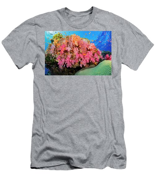 Alconarian And Gorgonian Coral Men's T-Shirt (Athletic Fit)