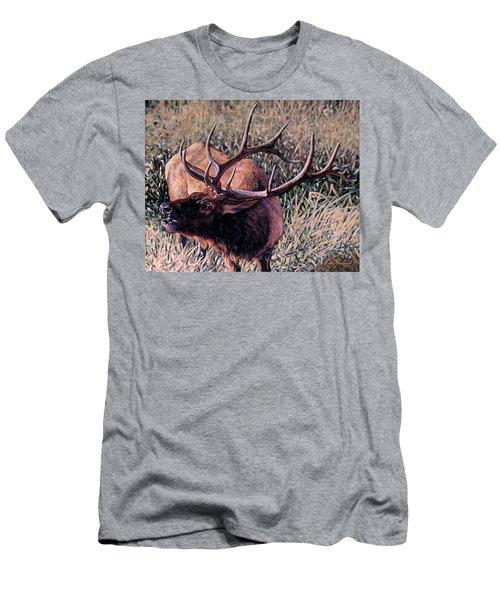 Bugle Boy Men's T-Shirt (Athletic Fit)