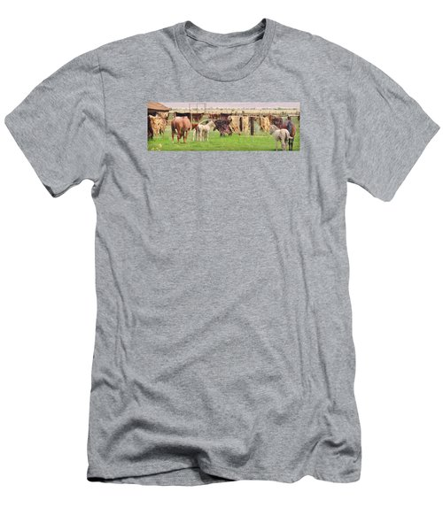 Men's T-Shirt (Slim Fit) featuring the photograph Cow Hides by Marilyn Diaz