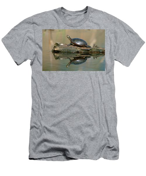 Eastern Painted Turtle Men's T-Shirt (Athletic Fit)