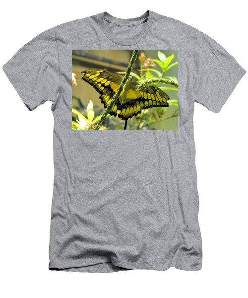 Giant Swallowtail Men's T-Shirt (Slim Fit) by Jennifer Wheatley Wolf
