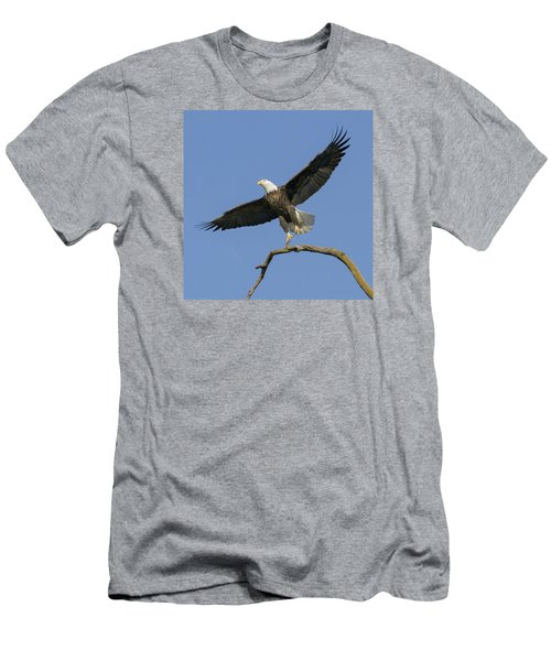 King Of The Sky 3 Men's T-Shirt (Slim Fit) by David Lester