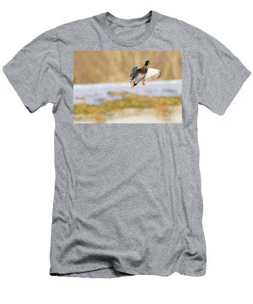 Mallard Landing Men's T-Shirt (Athletic Fit)