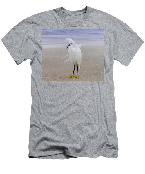 Snowy Egret At The Beach Men's T-Shirt (Athletic Fit)