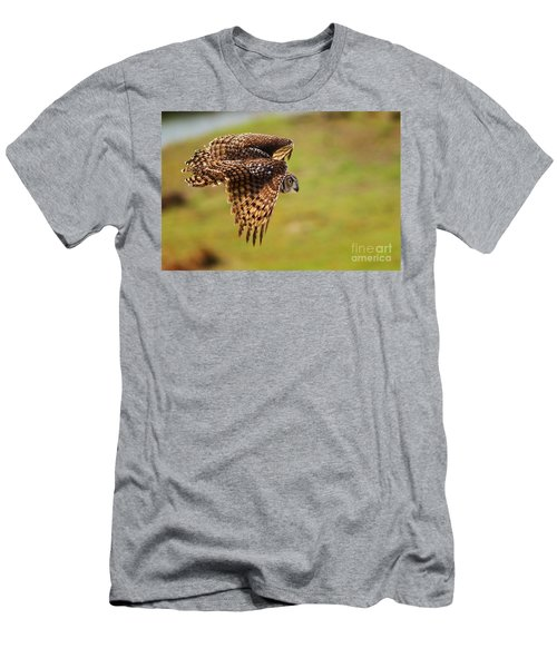Spotted Eagle Owl In Flight Men's T-Shirt (Athletic Fit)