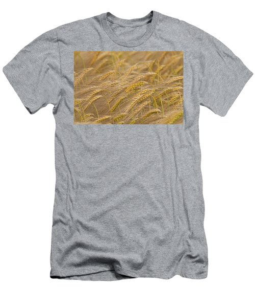 Men's T-Shirt (Slim Fit) featuring the photograph 130109p155 by Arterra Picture Library