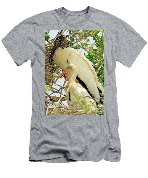 Wood Storks Men's T-Shirt (Athletic Fit)