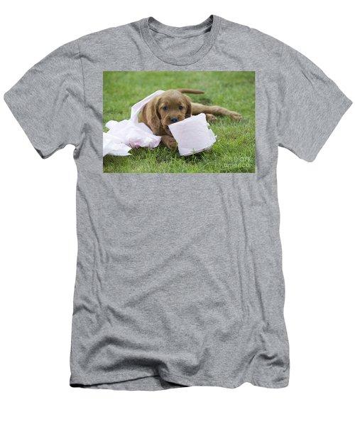Irish Setter Puppy Men's T-Shirt (Athletic Fit)