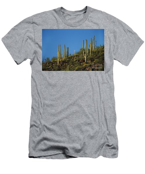 Saguaro National Park Men's T-Shirt (Athletic Fit)