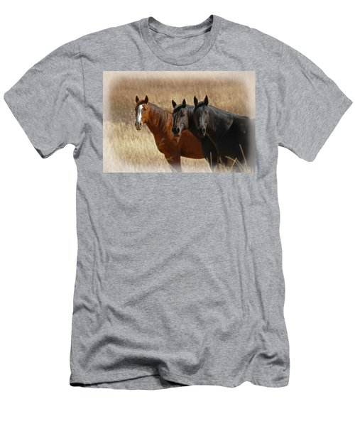 Three Horses Men's T-Shirt (Athletic Fit)