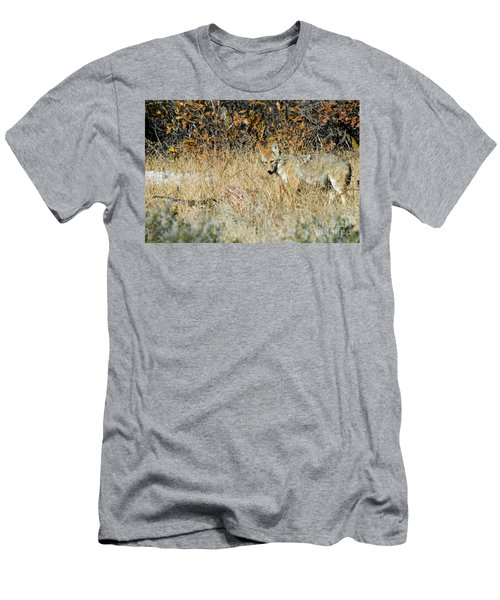 Coyotes Men's T-Shirt (Athletic Fit)