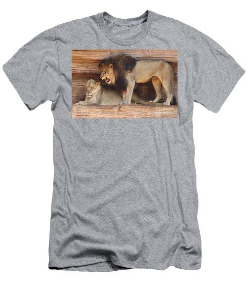 The Feline Honeymooners Men's T-Shirt (Athletic Fit)