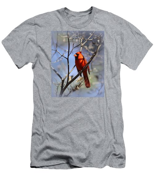 3477-006- Northern Cardinal Men's T-Shirt (Athletic Fit)