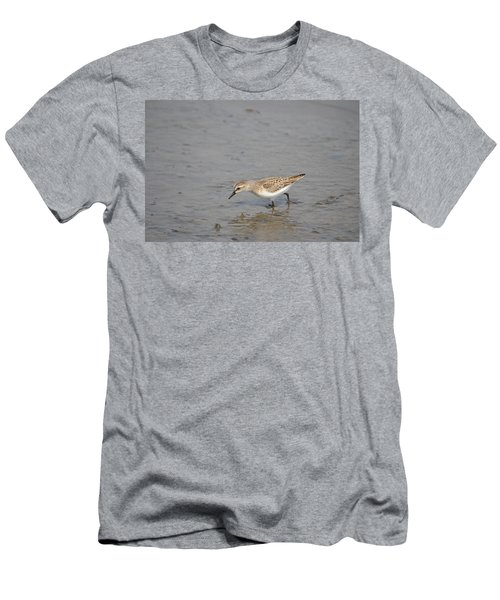 Men's T-Shirt (Slim Fit) featuring the photograph Semipalmated Sandpiper by James Petersen