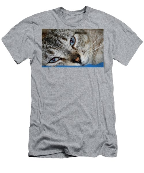 A Cat Named...blue Men's T-Shirt (Athletic Fit)