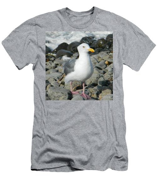 Men's T-Shirt (Slim Fit) featuring the photograph A Curious Seagull by Chalet Roome-Rigdon