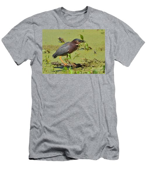 Men's T-Shirt (Slim Fit) featuring the photograph A Greenbacked Heron's Breakfast by Kathy Baccari